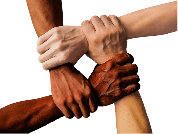 Four diverse hands gripping the wrists of each other's.
