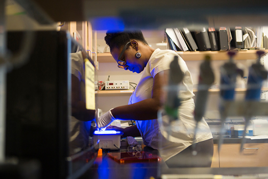 African American Woman Scientist in the lab