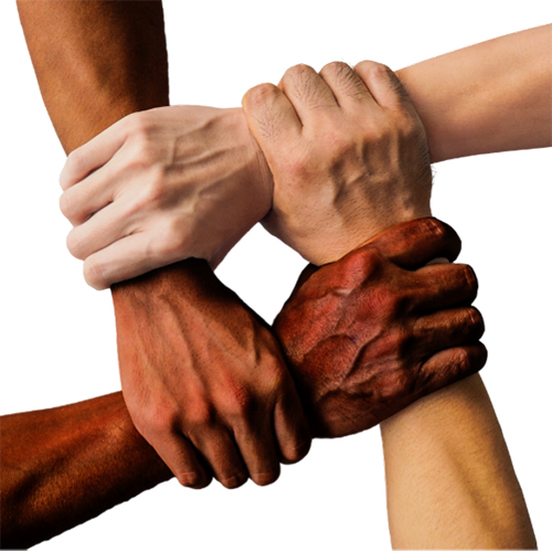 Four diverse hands gripping the wrists of each other's